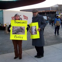New York Takes a Stand Against Ringling Bros. and Barnum & Bailey Circus