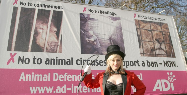Wendy Turner Webster supports ADI