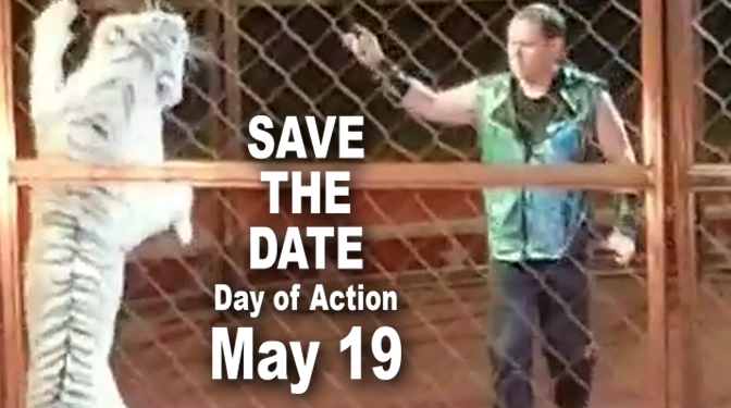 'Save the Date Day of Action May 19' on a photo of Adam Burck performing with a tiger.